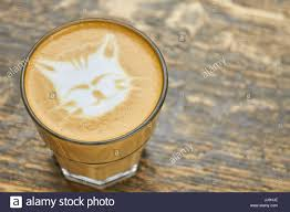 Cat Coffee Art Stock Photo 148958166