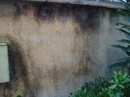 nettoyer le crépi extérieur après 5 ans carolyne s home