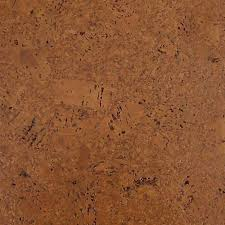 Bamboo Cork Flooring WE Cork Flooring