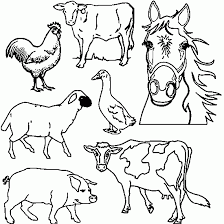Free Farm Animal Coloring Pages Rooster Gianfreda Net