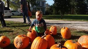Pumpkin Patch Northwest Arkansas 2015 by Spencer Farms Orchard Home Facebook