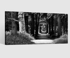 leinwandbild 1tlg schwarz weiß baum allee wald grün baumkrone weg natur bilder leinwand wandbild leinwandbilder wohnzimmer 9cb733 wandtattoos und