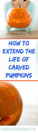 Easy Zombie Pumpkin Stencils by 22 Best Pumpkin Decorating Images On Pinterest Halloween