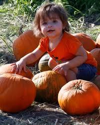 Pumpkin Patch Cal Poly Pomona by Pumpkin Festival Boasts Family Friendly Fun U2013 Pcc Courier
