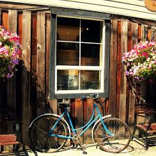 Rustic Old Vintage Bike In Front Of Distressed Building And Window Flowers Flower