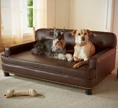 Leather Sofa With Dogs Balmoral Black Faux Leather Dog Sofa Bed