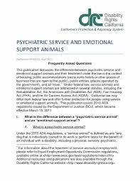 Emotional Support Dog Letter Great Free Sample Resignation Letter