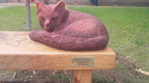 cat stop memorial unveiled in havant for stop cat news