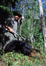 Learn The Basics Before Hunting Bears Hunting Land For Lease In Texas Barnes Keith Ranch Way To Show Horserider Western Traing Howto Advice Petersens Devoted The Sport Of Recreational 2017 Camp Meeting Daily Schedules District United Kings Head Coach Smart Discusses Struggles Against Houston Exotics Gallery Whitetail Deer Turkeys Goats And Wild Pigs Index Names From 1968 Bridgeport Newspaper Ultimate Predatorbarneskeith Ranch Boss Hog Contest Youtube Ultimate Predator