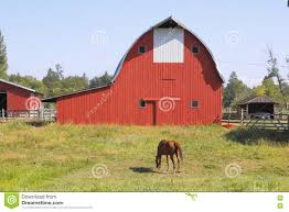 Red Barn And Horse Grazing Stock Photo - Image: 75212710 Sleich Toysrus Best 25 Barn House Decor Ideas On Pinterest Melissa Sigler Photographychic Vintage Wedding At Weston Red Farm Mother Son Father Fall Family Pictures Red Barn Decorah Theme Song 1970 Youtube Alburque Photographer Location Spotlight Abq Biopark Images Stock Pictures Royalty Free Photos And Adult Book Jersey New Kristi Nude Shindig Time Music San Luis Obispo New Times Bagwell Camping Trip 2015 With Review Weymouth Lyndsey Paige Photography Haley Joey Lewandowski Little Hen Stage Background Little