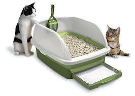 best cat litter boxes 10 best self cleaning cat litter box 2017 buyer s