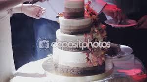 The Couple Cut Wedding Cake Rustic Stock Video