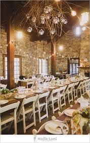 Rustic Wedding Decor Branch Chandelier