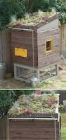 Ana White Shed Chicken Coop by 37 Chicken Coop Designs And Ideas 2nd Edition Homesteading