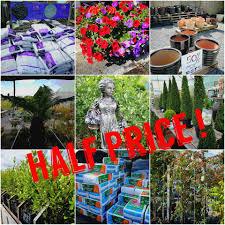 Mcgrath St Pumpkin Patch by Black U0027s Garden Centre Home Facebook