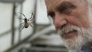 Remains Of The Day Spiders by Spiderman Scientist Is Making Us Superhuman Cnn