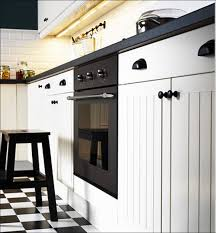 Kitchen Cabinet Refacing Denver by Kitchen Ikea Cabinet Ikea Efacing Kitchen Cabinets Cost Pantry