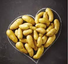 cuisiner des pommes de terre ratte comment cuire les rattes du touquet