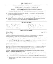 Internet Marketing Consultant Resume Product Manager Free Samples Blue Sky Resumes Executive Amp Professional Best