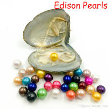 100 Where Is Dhgate Located 2019 2018 Edison Oyster Pearl 9 12mm 16 Mix Color Freshwater Gift