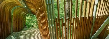 100 Tree House Studio Wood Modus Studio Sculpts Native Pine Ribs Into Evans Tree House