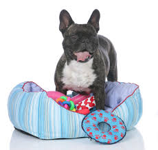 tips chew proof dog bed tuff dog toys chew resistant dog bed