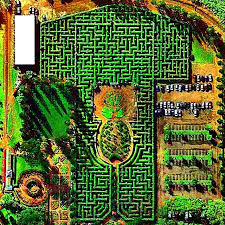 The Pineapple Garden Maze at the Dole Plantation in Wahiawa