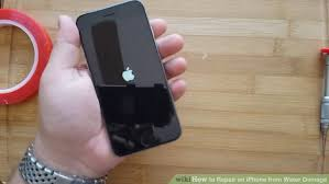 How to Repair an iPhone from Water Damage with