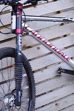 Lefty Carbon Cycling