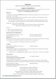 Resume Objective Examples Massage Therapist