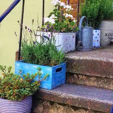 Love your pots 25 inspiring & practical ideas for container