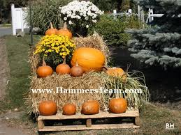 Local Pumpkin Farms In Nj by Hillsdale New Jersey Halloween Tricks U0026 Treats Local Holiday Events