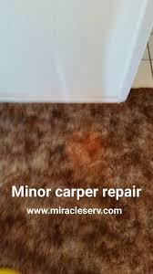 Dog Urine Hardwood Floors Stain by Pet Dog Cat Urine Carpet Cleaning San Diego