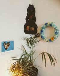 ecke im wohnzimmer pflanzen diy deko