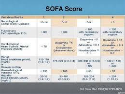 sofa score calculator excel refil sofa