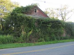 Abandoned Barn In Warren County | The Lostinjersey Blog Quality Amish Buildings Including Patio Fniture Mike The Upstairs At Barn Perona Farms My Second Choice Spot Sherris Jubilee Day One Of My Nj Trip New Jersey Rustic Wedding Chic Metal Barns Steel Pole First Dance The Rustic Rodes In Swedesboro 25 Best Loft Jacks Images On Pinterest Loft Top Venues Weddings Farm How To Find And Identify Owl Audubon Ebird Anyone Know History These Barns Hackettstown Sheds
