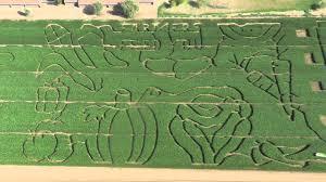 Pumpkin Patches In Phoenix Az 2013 by Tolmachoff Farms Pumpkin Days U0026 Corn Maze Is Here Youtube