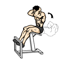 Abs Roman Chair Knee Raises by Exercise For Toned Body Men Exercises For Six Packs Ab