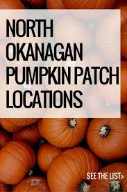 Pumpkin Patch North Austin Tx by The 25 Best Pumpkin Patch Locations Ideas On Pinterest Family
