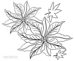 Poinsettia Coloring Page Kids Printable Pictures Images