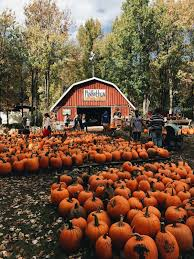 Faulkner County Pumpkin Patch by Style By Salli Dreams Pinterest Autumn Autumn Fall And Holidays