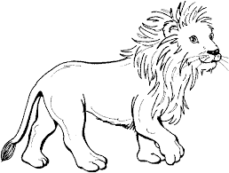 Zoo Animals Coloring Pages Animal Pictures Colorine Net Free Printable