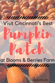 Best Illinois Pumpkin Patches by 374 Best Travel Fall Travel Images On Pinterest Family Trips