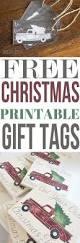 Krinner Christmas Tree Genie M by Best 25 Best Christmas Tree Ideas On Pinterest Spiral Christmas