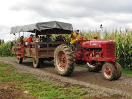Pumpkin Patch Rides by The Best Pumpkin Patches In Portland Or And Surrounding Areas