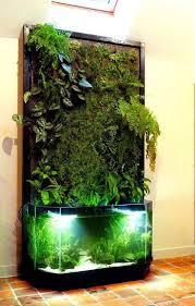 Petco Flower Ball Aquarium Decor by Best 25 Amazing Aquariums Ideas On Pinterest Amazing Fish Tanks