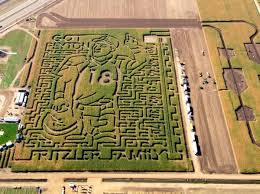 Tebow traded for Manning in Weld County corn maze design – The