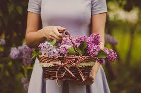 Person Plant Girl Woman Flower Purple Rustic Spring Basket Pink Bride Holding Flora Flowers Ceremony Dress