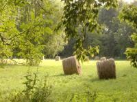 chambre d hote villeneuve sur yonne le moulin de cochepie à villeneuve sur yonne