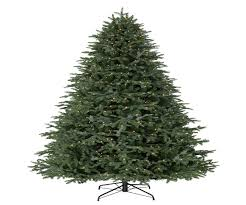 7ft Pencil Xmas Tree by Artificial Christmas Trees Argos Christmas Lights Decoration